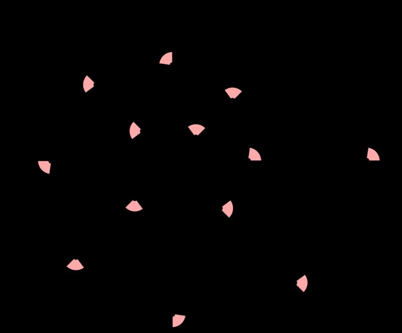 対数螺旋 等角螺旋 等角性